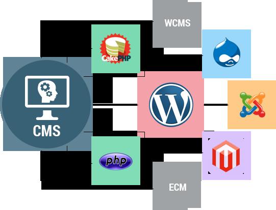 cms-developers-banner